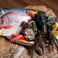 plateau de poissons et fruits de mer